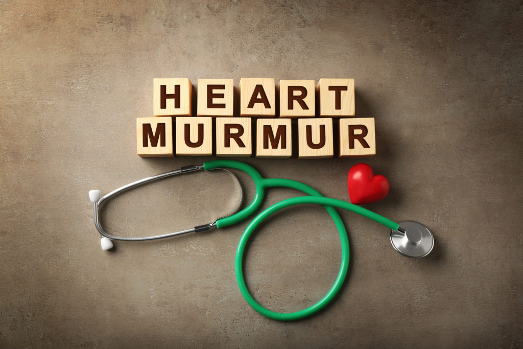 heart murmur in children